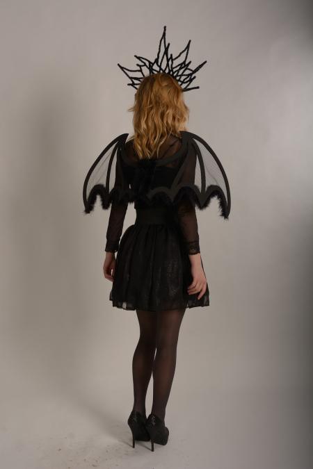 Крылья маленькие черные