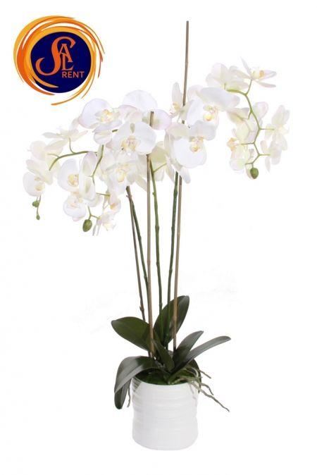 Орхидея в горшке (90 см)