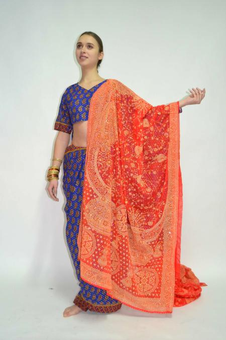 Индийские сари