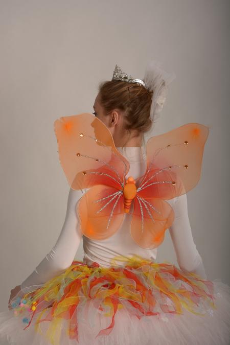 Крылья оранжевые