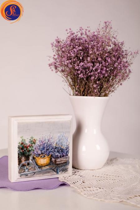 Сухоцветы Гипсофилы
