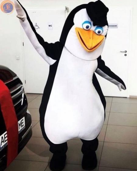 Пингвин из Мадагаскара