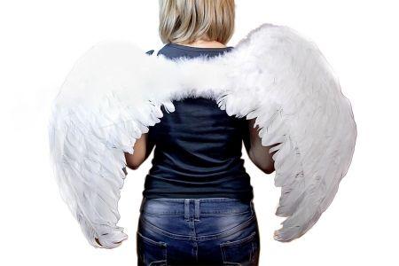 Крылья ангела в аренду и прокат, белые. Киев | SAL-rent